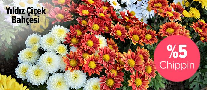 Yıldız Çiçek Bahçesi