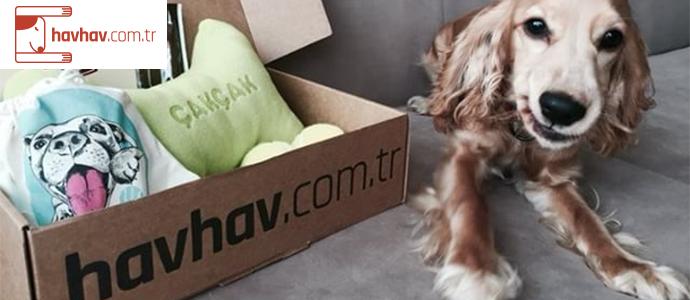 havhav.com.tr adresindeki ilk ödemende 10 TL kazan
